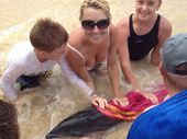 A BABY dolphin found struggling for life at Rainbow Beach on Friday afternoon died over the weekend, but not before capturing a family's heart.