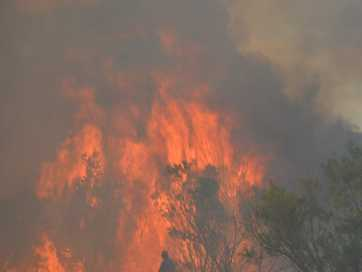 Firefighters from Queensland and New South Wales have been battling a large fire at Cullendore since Tuesday afternoon.