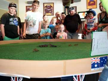 Beachmere residents got in the spirit for Australia Day at the Beachmere Tavern. The yabby races were a hit.