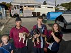 A FAMILY which lost almost everything in a house fire must choose whether to give up their pets or keep living in a bus.