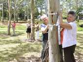 PROTESTERS have re-tied hundreds of strips of cloth around trees set for removal after council swept through Garnet Lehmann Park to tear down their ribbons.