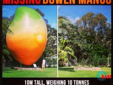 Memes and photos of Bowen's missing mango.