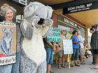 THERE are cheaper and more direct routes for the Woolgoolga to Ballina highway upgrade that would not destroy important koala populations, protesters claim.