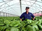 "NORTHERN Rivers farmers are turning to hydroponic growing to ""take climate out of the equation""."