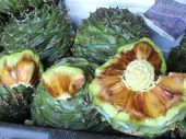 BUNYA NUTS: The delicious native nuts are enjoying favour with city foodies.