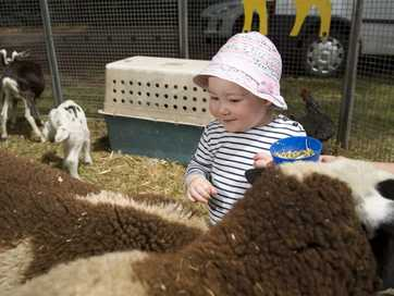 Community spirit brings thousands through the gates for the annual Glennie Fair.