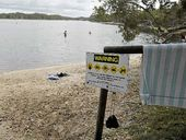 File photo. People still chose to take to the water despite a blue-green algae red alert for Lake Ainsworth at Lennox Head.
