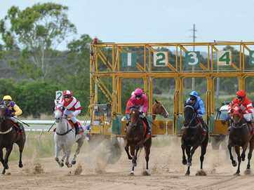 There were four races at Gladstone's Ferguson Park on Saturday.