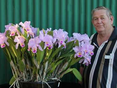 John Green, qualified orchid judge and president of the Noosa and District Orchid and Foliage Society, will give a talk on growing orchids for local conditions.