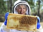 AN INCREASING number of Ipswich land owners are beginning to learn that bees are essential for more than just the production of honey.