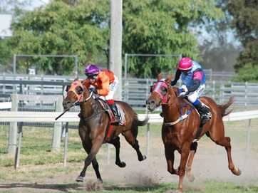 The Wandoan Race Meet 2014 was held on Saturday, March 22. It drew a crowd of about 300 and saw a strong representation from Oakey, Dalby, Chinchilla and Taroom trainers on the day.
