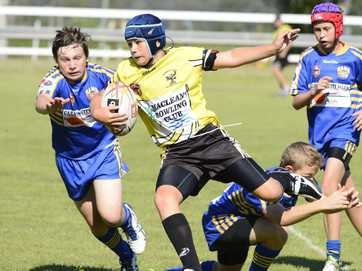 Junior rugby league action at Maclean Showground on Saturday. Photo Debrah Novak / The Daily Examiner