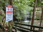 IF YOU are thinking about taking a dip in the Buderim Forest Park then think again.