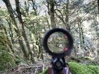 A HUNTER in New Zealand was shot dead by a member of another hunting party in Southland yesterday.