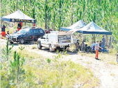 POLICE yesterday confirmed that a skull found in Tin Can Bay forestry was damaged, possibly by a bullet or other weapon.