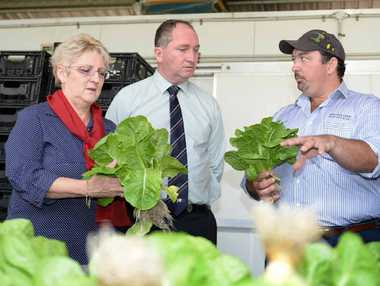 LOVELY LETTUCE: Federal Minister for Agriculture Barnaby Joyce meets with local grower Daryl Wilson, from Wilson's Hydroponic Lettuce Farm, during his time in the Rockhampton area.