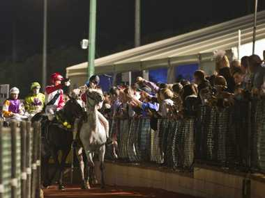 The crowd celebrates the win of Typhoon Red in last Saturday night's Weetwood Handicap at Clifford Park.