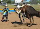 THIS year's Roma Rodeo and Bull Ride has been hailed as one of the best in memory, with record crowds and nominations making for a huge weekend of action.