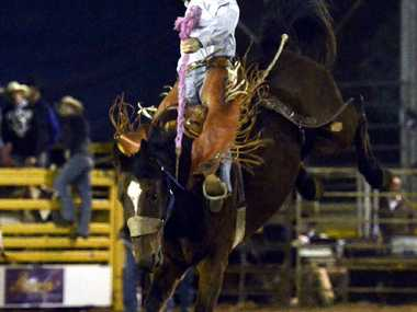 GREAT RIDE: Mitchell's Greg Hamilton hangs on for the win at the Roma Rodeo.