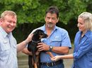MACKAY Regional Council's pound has one of the best re-homing rates in Queensland.