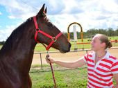 HOME TRACK HOPEFUL: Wondai trainer Kristen Wenck prepares her mare Epona Fire for today's South Burnett Race Club's Anzac Day race meeting at the Wondai Racetrack. Photo: Aiden Burgess / South Burnett Times