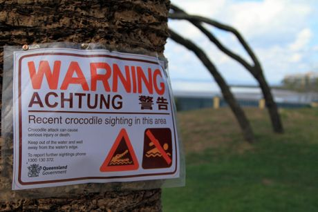 Temporary signs are still in place after the recent croc sighting at Urangan.