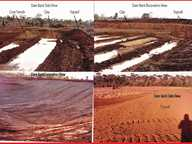 I have constructed dam and pondage banks over several years and I have some hands on knowledge of what is required to build a successful bank.