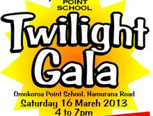 Omokoroa Point School Twilight Gala